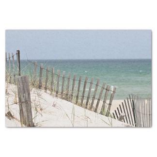 Ocean view through the beach fence tissue paper