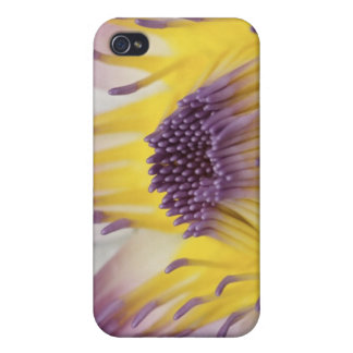 Oceania, Fiji, Purple Panama Pacifica Nymphea Case For iPhone 4