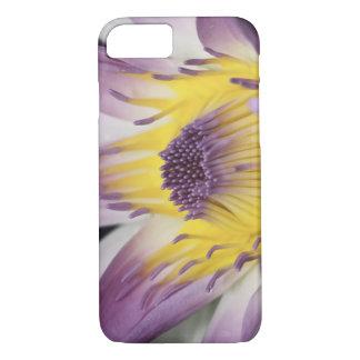 Oceania, Fiji, Purple Panama Pacifica Nymphea iPhone 8/7 Case