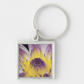 Oceania, Fiji, Purple Panama Pacifica Nymphea Key Ring
