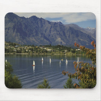Oceania, New Zealand, South Island, Queenstwon. Mouse Mat