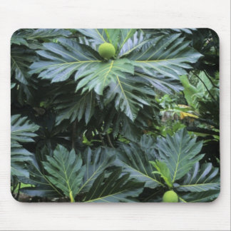 Oceania, South Pacific, French Polynesia, Mouse Mat