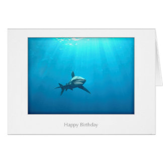 Oceanic Whitetip Shark Birthday Card