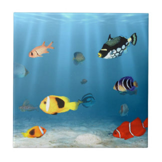 Oceans Of Fish Small Square Tile