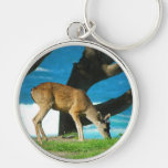 Oceanside Deer Key Chain