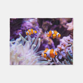 Ocellaris Clownfish   Amphiprion Ocellaris Fleece Blanket