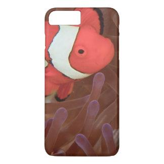 Ocellated Anemonefish Amphiprion ocellaris) iPhone 8 Plus/7 Plus Case