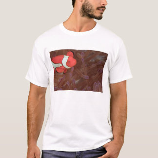 Ocellated Anemonefish Amphiprion ocellaris) T-Shirt