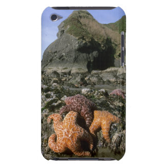 Ochre Seastars Pisaster ochraceous) Shi-Shi iPod Touch Case