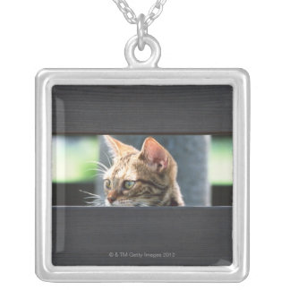 Ocicat 4 silver plated necklace