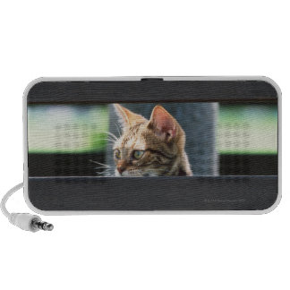 Ocicat 4 laptop speakers