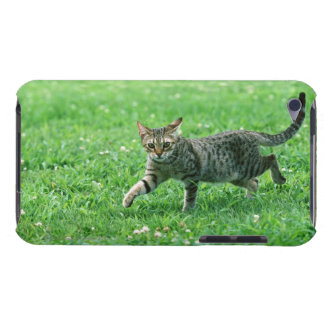 Ocicat Barely There iPod Cover