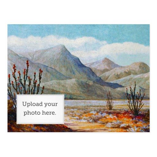 Ocotilla Shrub Post Card