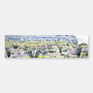 Ocotillo And Desert Flowers In Bloom Bumper Sticker