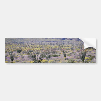 Ocotillo And Desert Flowers In Bloom flowers Bumper Stickers