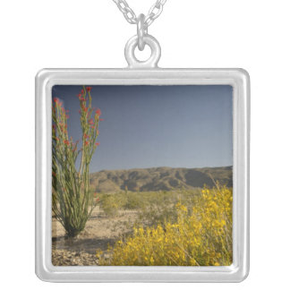 Ocotillo and desert senna silver plated necklace