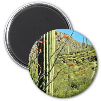 Ocotillo And Saguaro Cacti Refrigerator Magnet