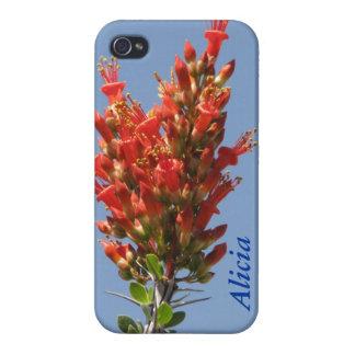 Ocotillo Plant iPhone 4 Case