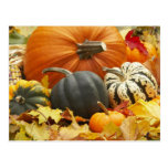 October Decoration Postcard