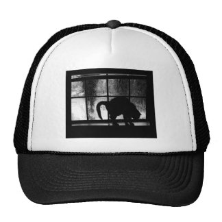 October Showers Cat Silhouette At Window 2 B&W Cap