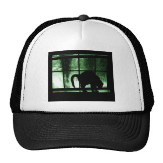 October Showers Cat Silhouette At Window 2 Green Cap