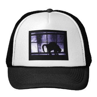 October Showers Cat Silhouette At Window 2 Indigo Cap