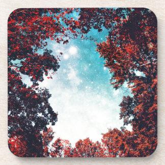 October Sky Coaster
