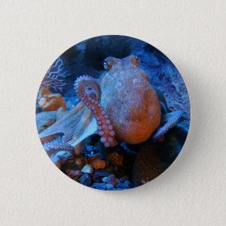 Octopus 6 Cm Round Badge