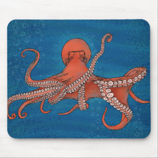 Octopus approaching mouse mat