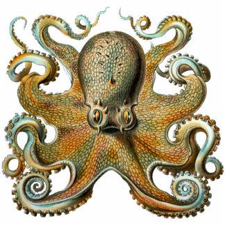 Octopus Cutout Magnet/Sculpture Photo Sculpture Magnet