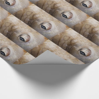 Octopus Eye Wrapping Paper