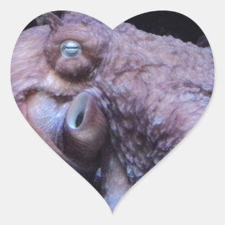 Octopus Heart Sticker