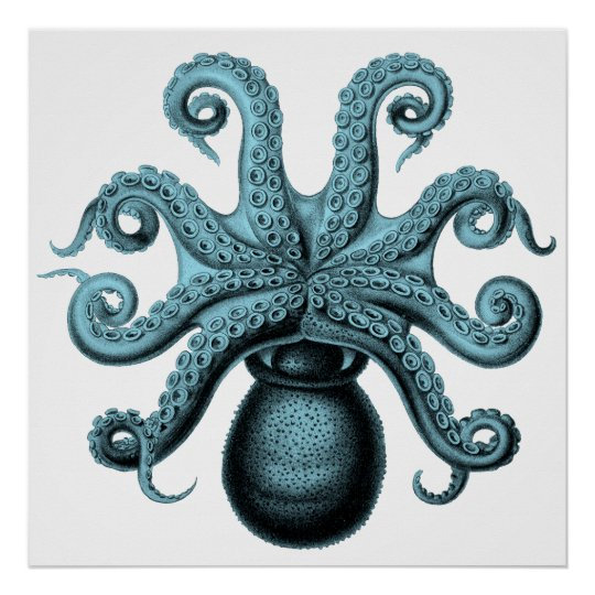 Octopus in Teal Poster
