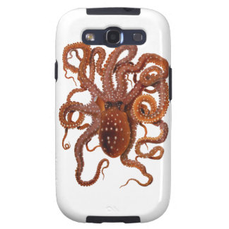 Octopus Macropus Atlantic White Spotted Octopus Samsung Galaxy SIII Covers