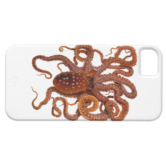 Octopus Macropus Atlantic White Spotted Octopus Case For The iPhone 5