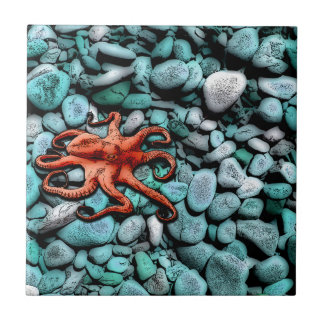 Octopus Pebbles Small Square Tile