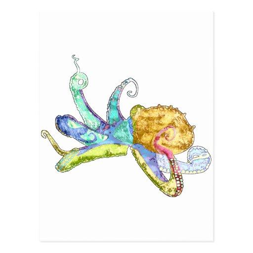 Octopus Postcard
