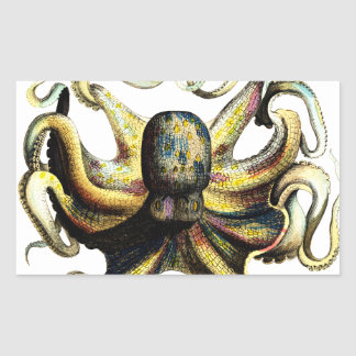 Octopus Rectangular Sticker
