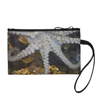 Octopus with Exposed Suction Cup Tentacles Change Purses
