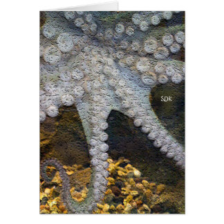 Octopus with Exposed Suction Cup Tentacles Note Card