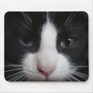 Odd Eye Black and White Cat Mouse Pad