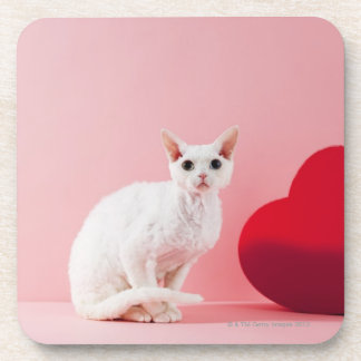 Odd-eyed cat coaster