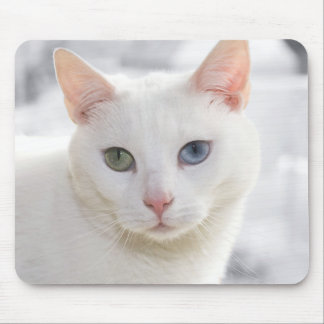 odd-eyed white cat close up face mouse pad