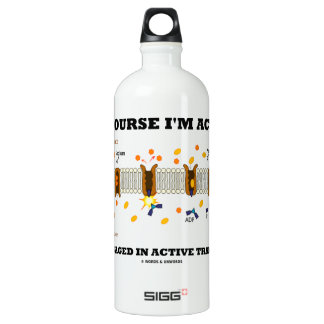 Of Course I'm Active Engaged In Active Transport SIGG Traveller 1.0L Water Bottle
