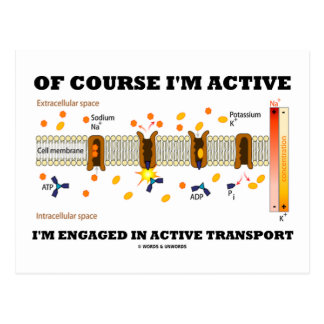 Of Course I'm Active I'm Engaged Active Transport Post Card