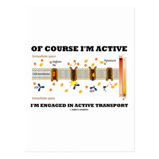 Of Course I'm Active I'm Engaged Active Transport Postcard