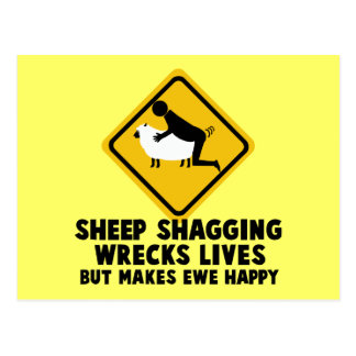 Offensive sheep postcards