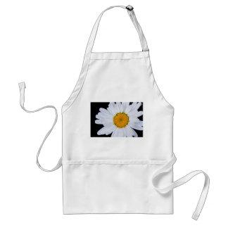 offer standard apron