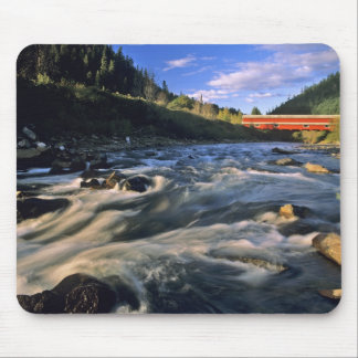 Office Covered Bridge the longest in Oregon at Mouse Mat