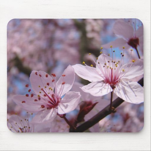 OFFICE GIFTS Mousepad PINK BLOSSOMS FLOWERS